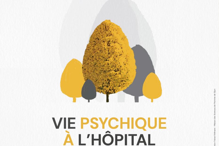 Webinaire «Vie psychique à l'hôpital : quelles cliniques et quelles recherches ?»